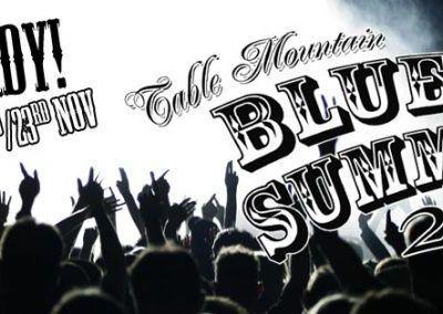 2013 - 22 & 23 Nov - Table Mountain Blues Summit banner ad